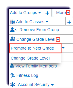MS-single_student-More-promote_to_next_grade.png